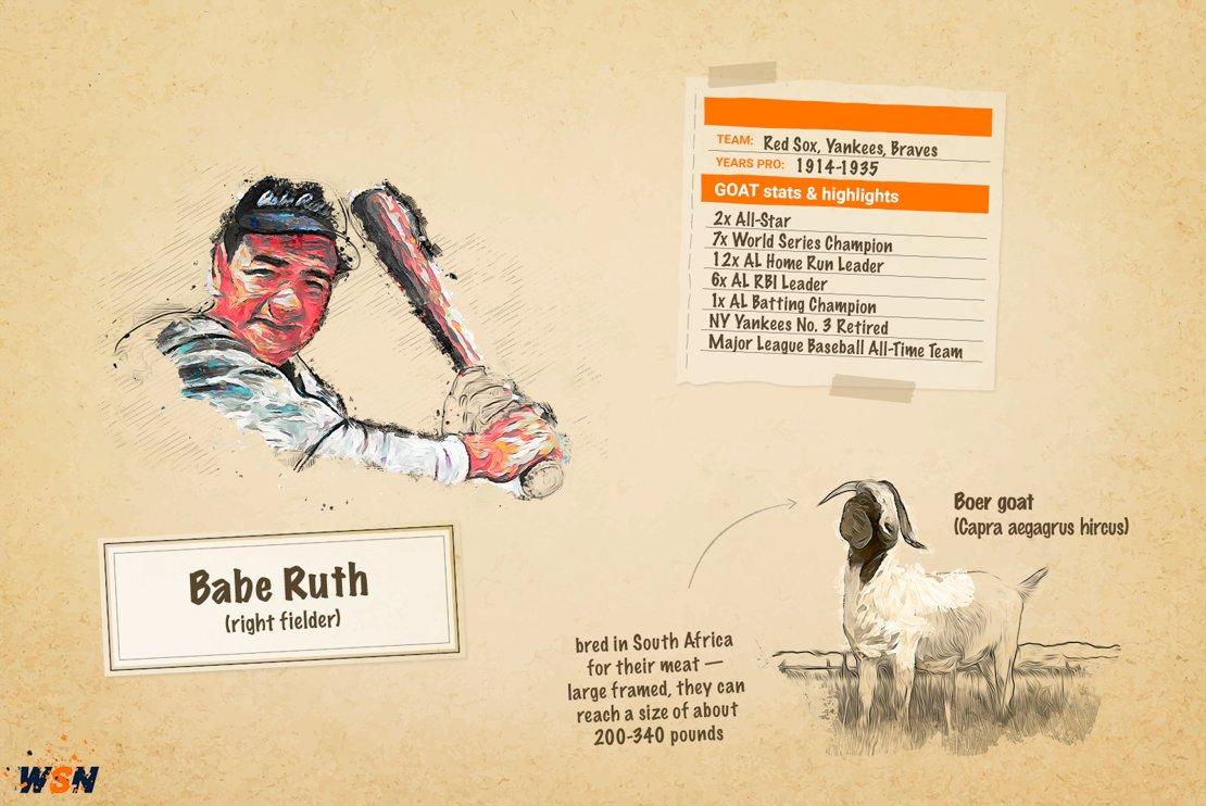 Babe Ruth GOAT