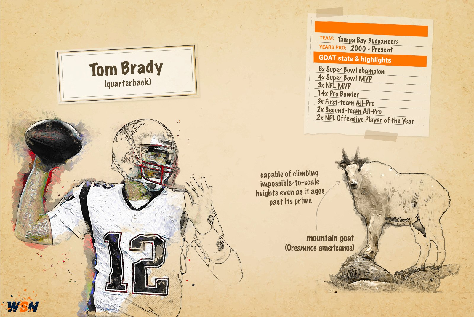 Tom Brady Tampa