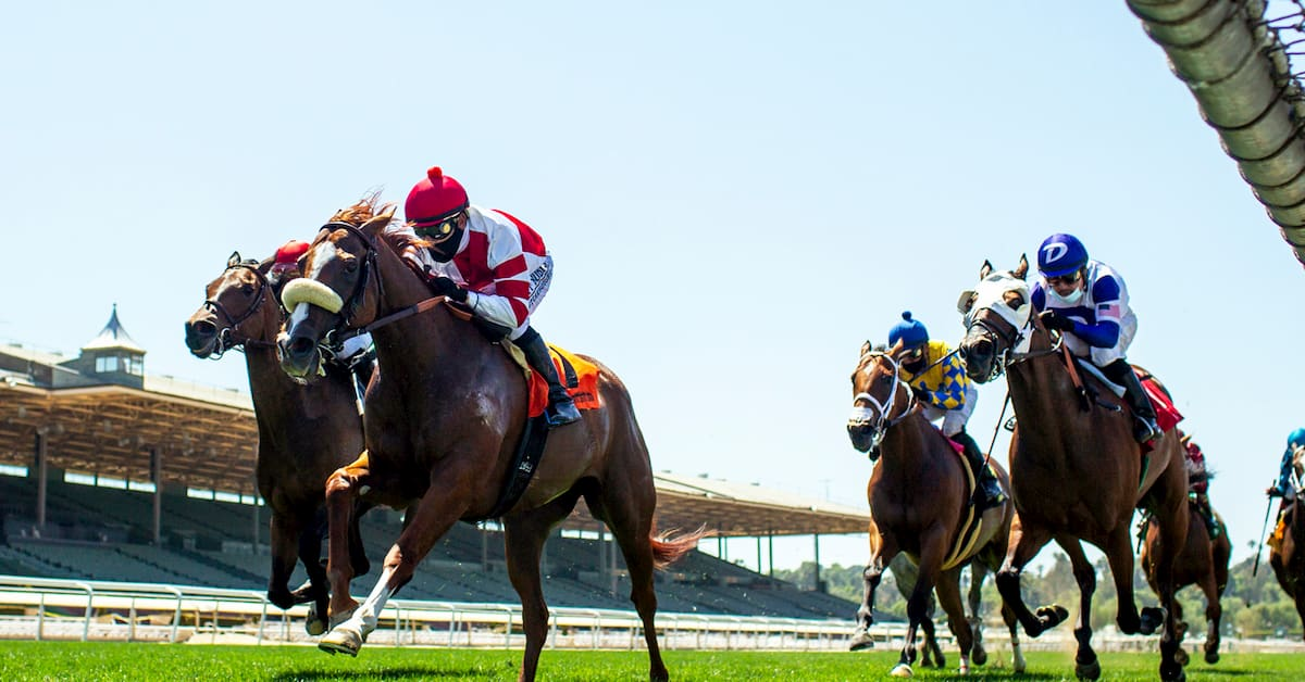 Forego Stakes (Saratoga) Predictions, Betting Odds & Picks