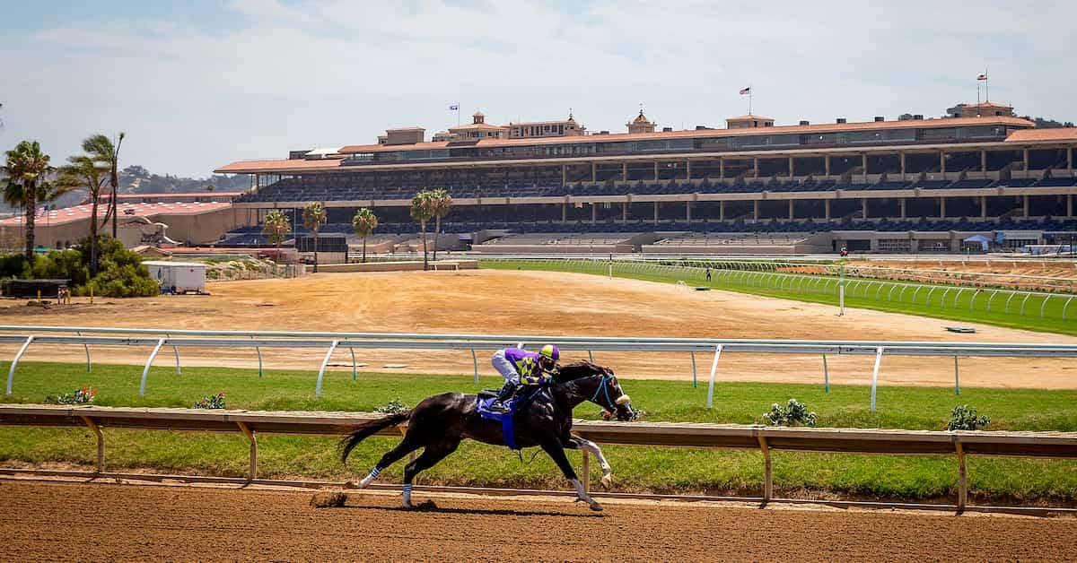 2020 Pacific Classic (Del Mar) Predictions, Betting Odds & Picks