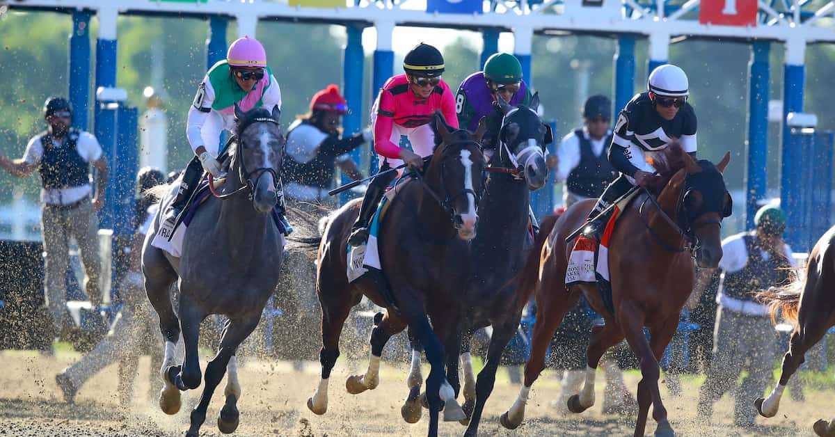 Woodward Stakes (Saratoga) Predictions, Betting Odds & Picks