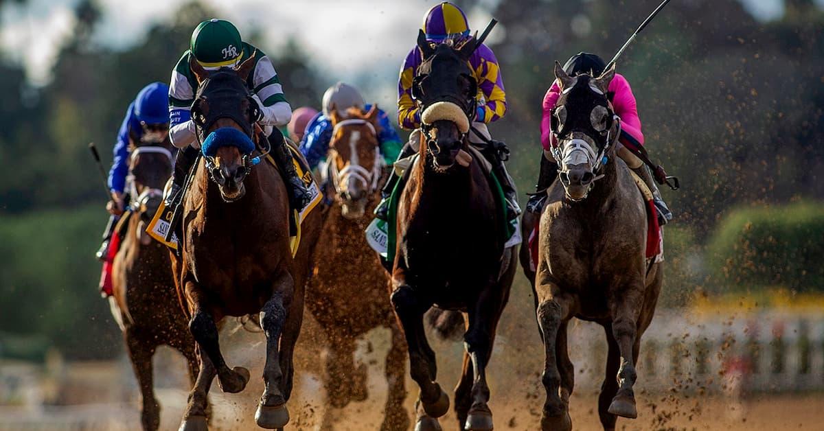 Bob Hope Stakes (Del Mar) Predictions, Odds & Picks