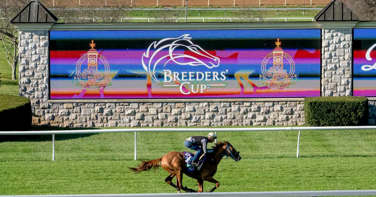 Breeders' Cup Classic (Keeneland) Predictions, Odds & Picks