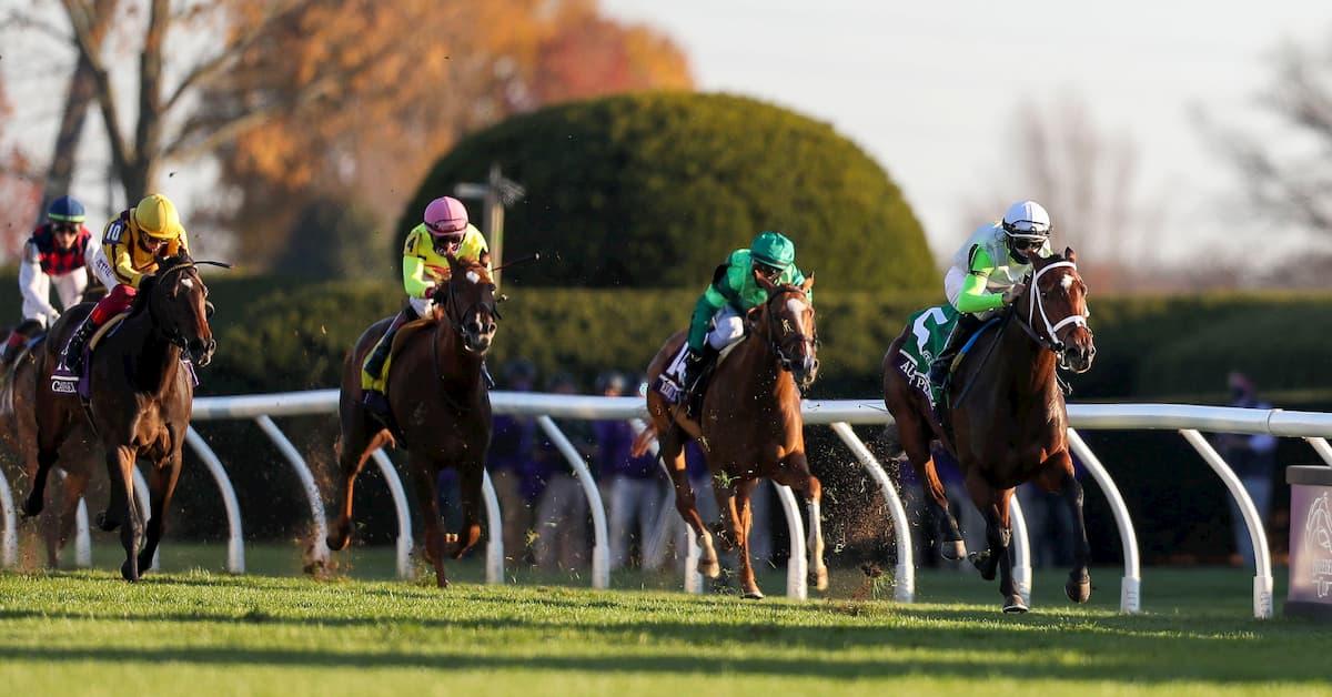 Chilukki Stakes (Churchill Downs) Predictions, Odds & Picks
