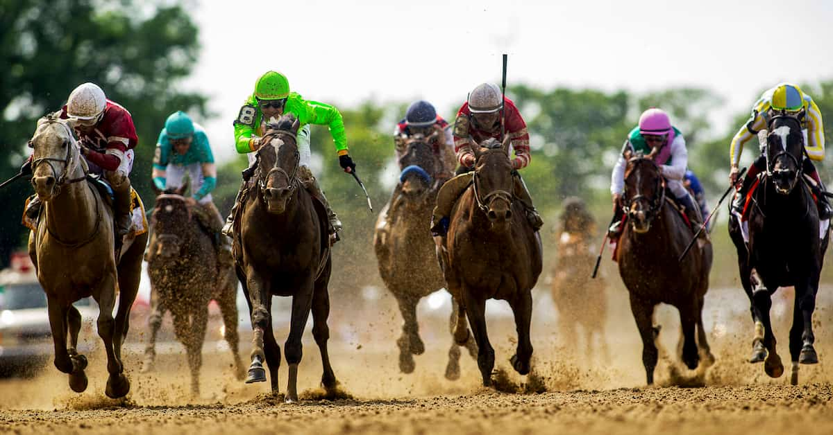 international horse racing betting calculator
