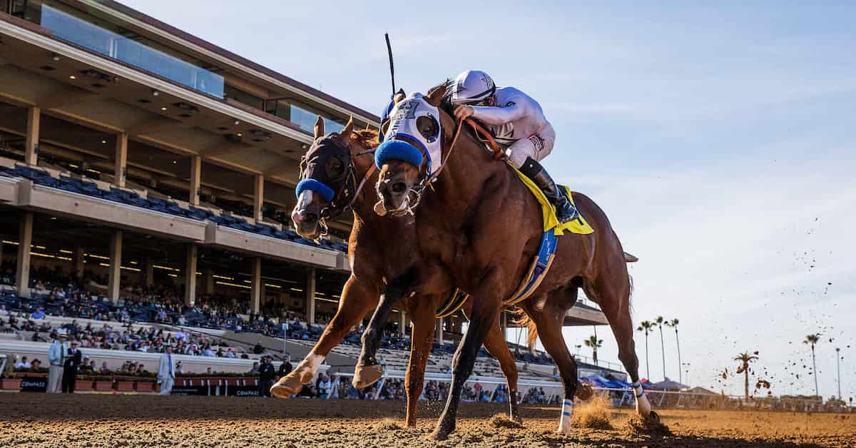 Del Mar Racetrack Guide