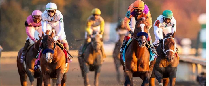 Online horse betting texas sportsbetting download