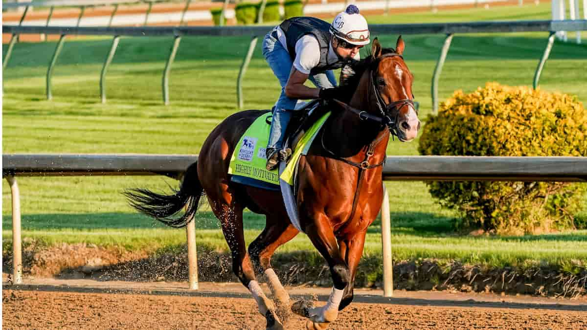 Kentucky Derby (Churchill Downs) Predictions, Picks & Betting Odds 2021
