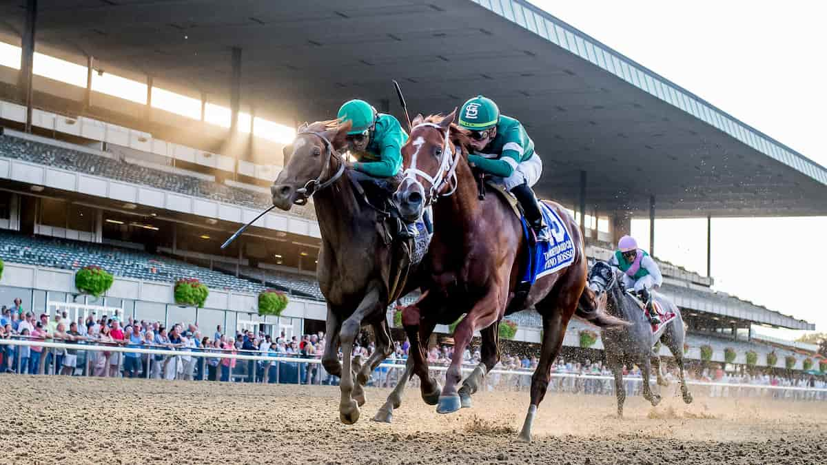 Peter Pan Stakes (Belmont Park) Predictions, Picks & Betting Odds 2021