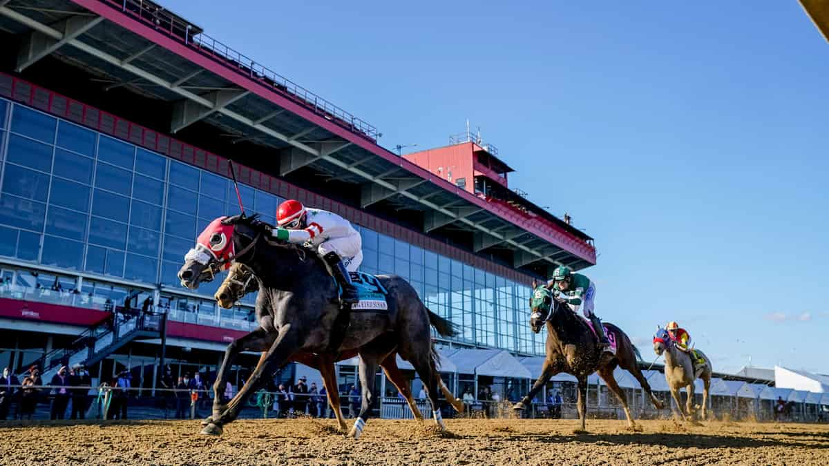 Preakness Stakes (Pimlico) Predictions, Picks & Betting Odds