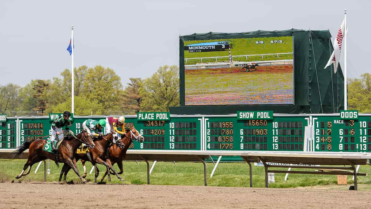 Pegasus Stakes (Monmouth Park) Predictions & Betting Odds