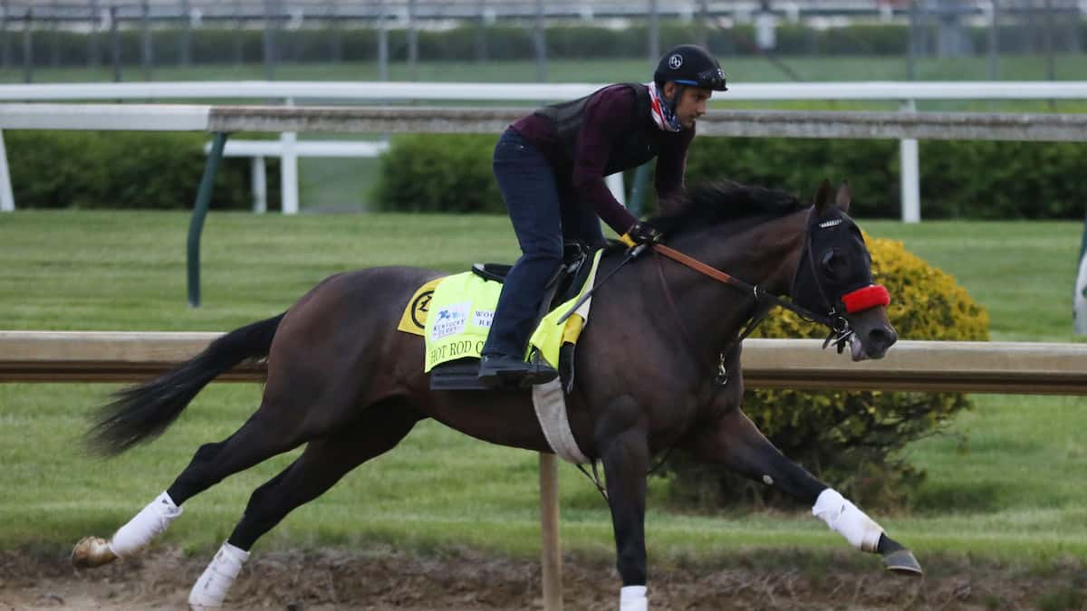 Haskell Stakes Predictions