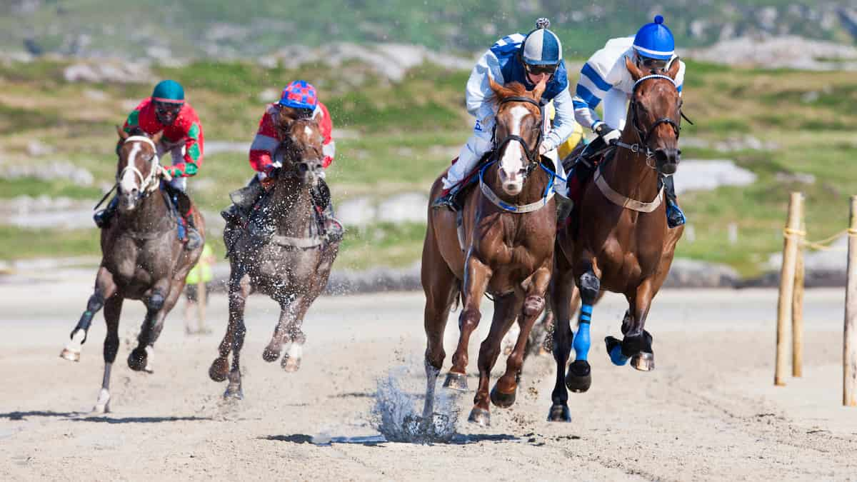 Best Horse Racing Picks This Weekend: Monmouth Park, Saratoga and Del Mar