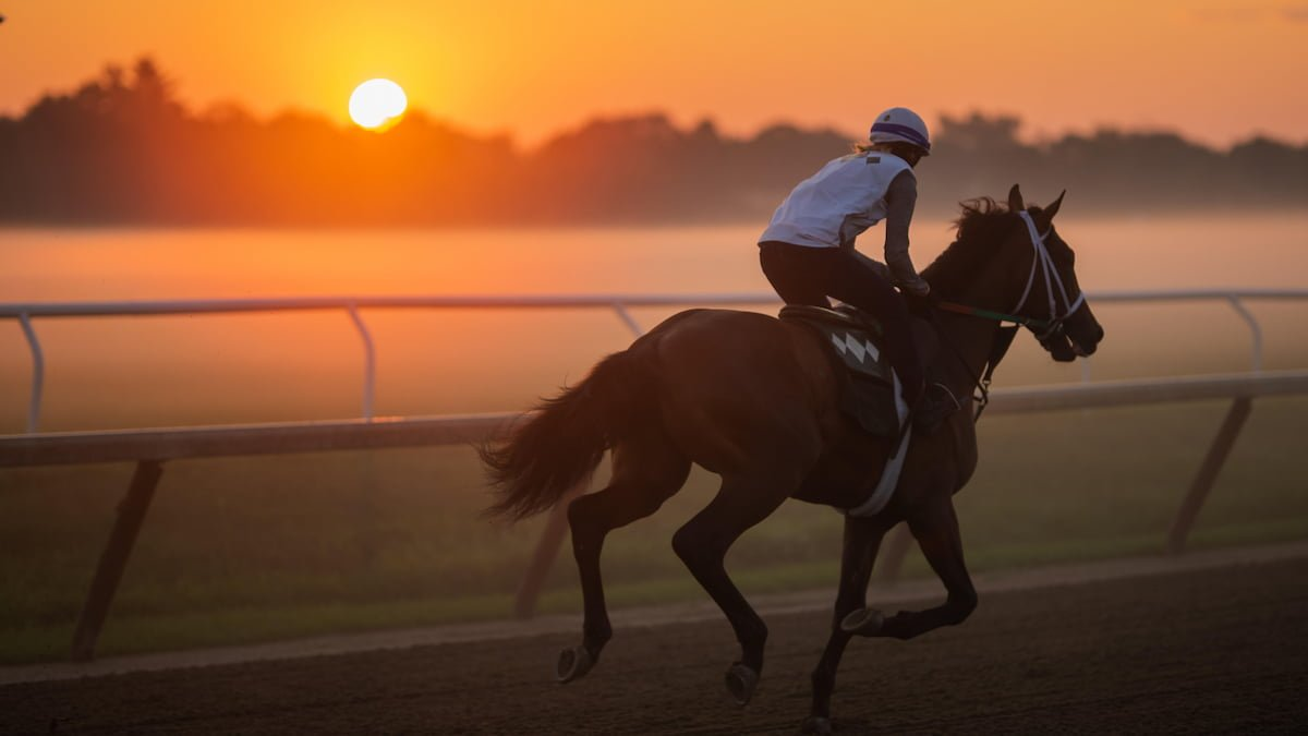 Schuylerville Stakes Predictions