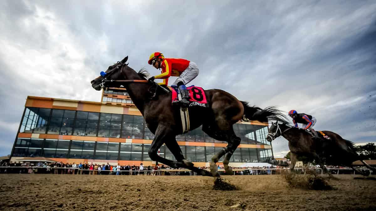 Best Horse Racing Picks This Weekend: Parx Racing