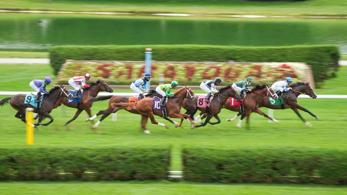 Jockey Club Gold Cup Predictions, Expert Picks, Odds (Saratoga)