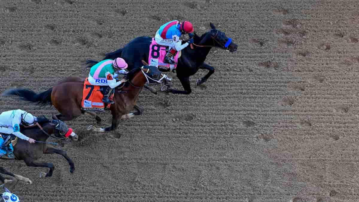 Kentucky Downs Ladies Turf Predictions, Expert Picks, Odds