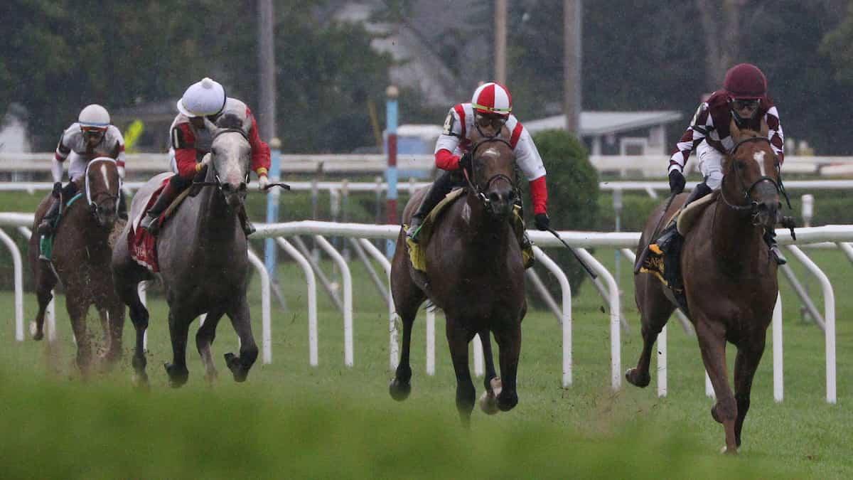 Prioress Stakes Predictions, Expert Picks, Odds (Saratoga)