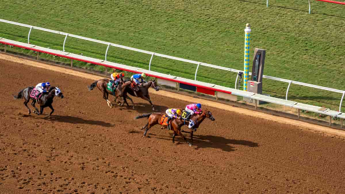 Best Horse Racing Picks This Weekend: Saratoga & Del Mar