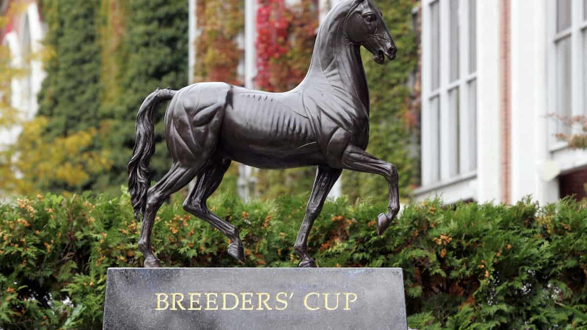 Breeder's Cup Classic Top Contenders