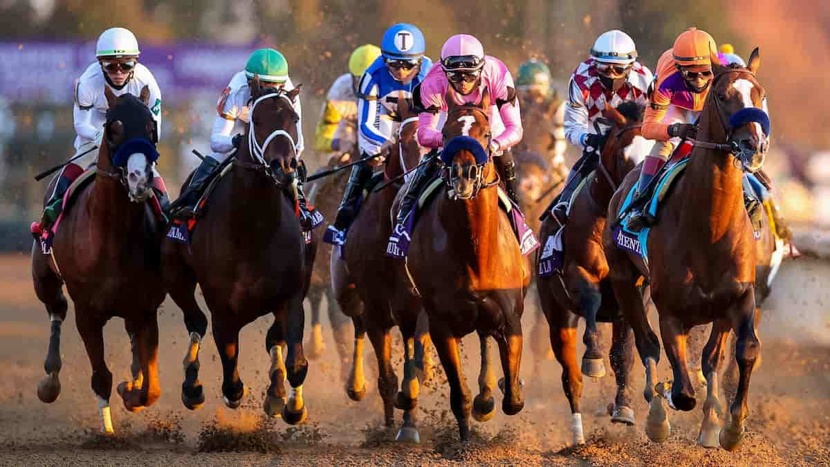 Valley View Stakes Predictions, Top Picks, Odds (Keeneland)